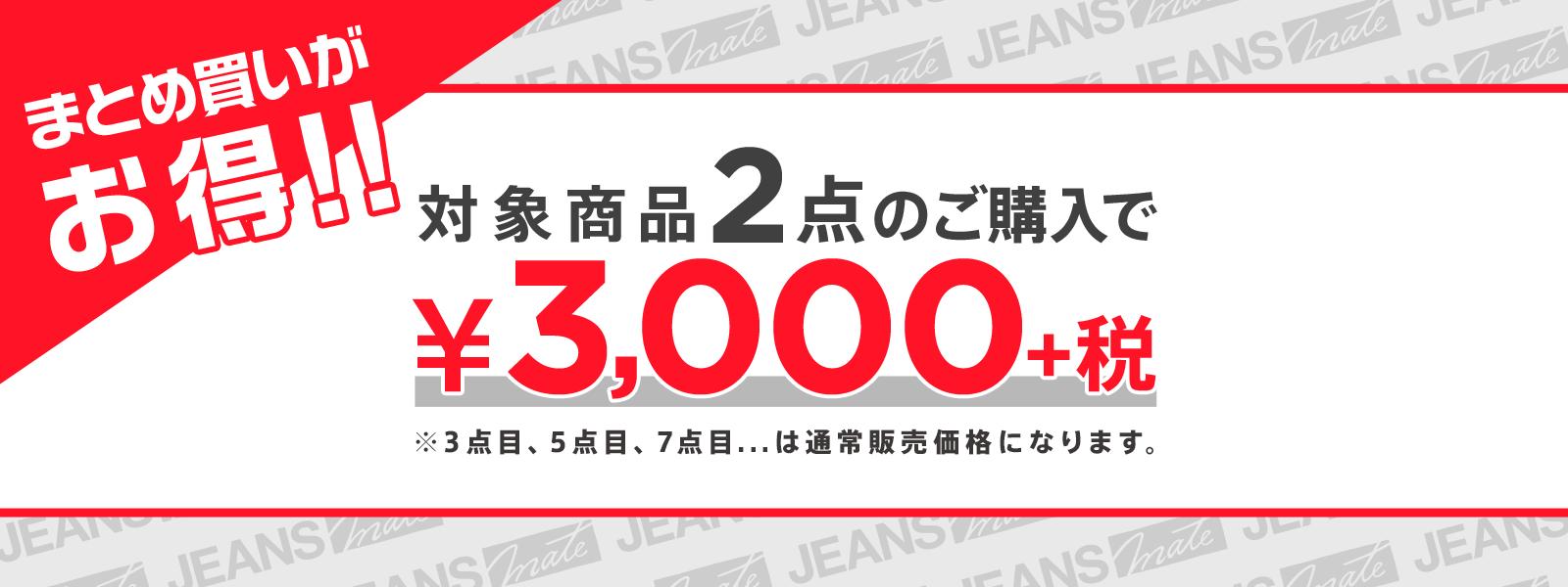 対象商品2点で3,000円